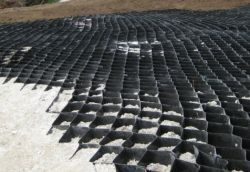 EcoCell 10 Geogrid for Tree Root Protection (Price on Application)